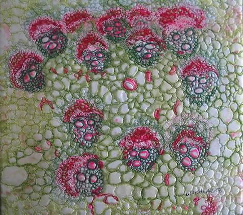 Wendy Feldberg Artist Mixed Media Textiles
